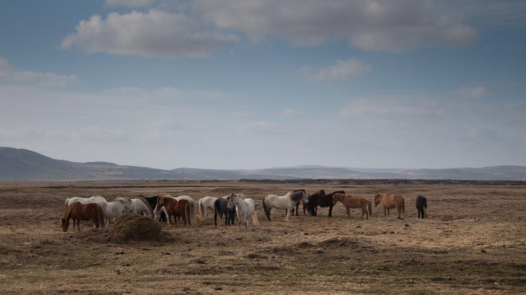 islande2012-15.jpg